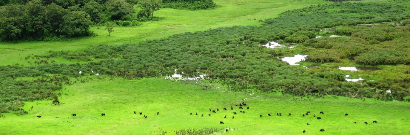 Day Trip – Arusha National Park